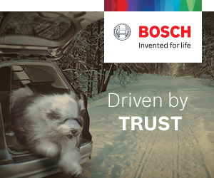 Bosch-sidebar to video Dogs to mid Jan 2020